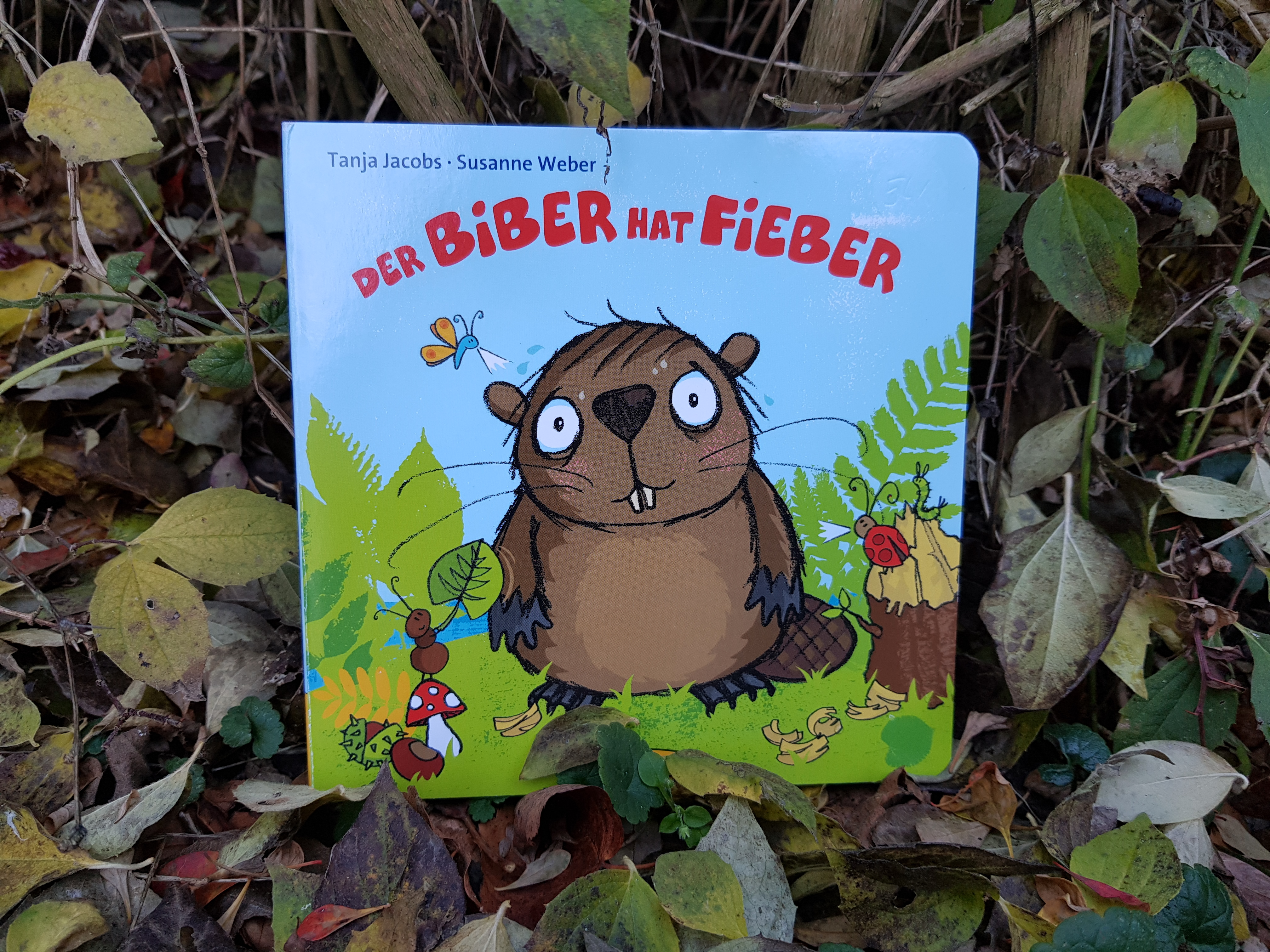 Kita-Magazin I Der Bieber hat Fieber I Bücher Natur und Umwelt